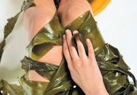 Parche de algas cicatrizador