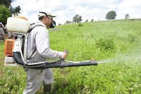 Urge menor uso de pesticidas