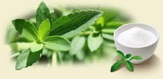 Stevia dulce revolución