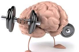 Alimentos que ayudan al cerebro
